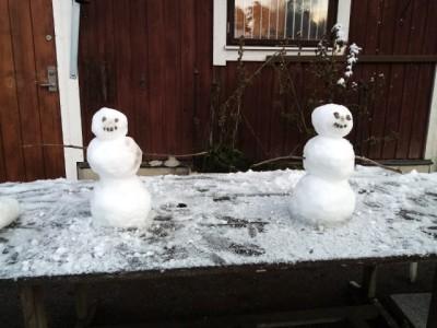 snö copy