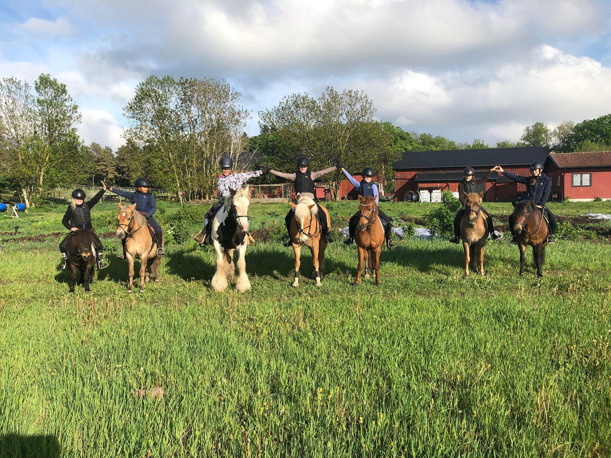 Hästgruppen