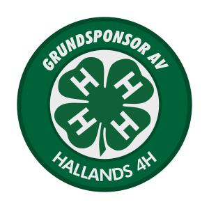 Grundsponsor - badge