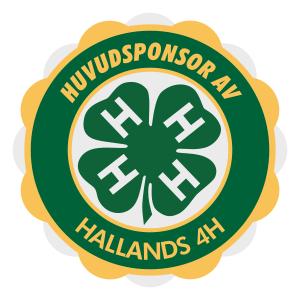Huvudsponsor - badge
