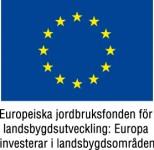 EU-flagga-Europeiska-jordbruksfonden-färg