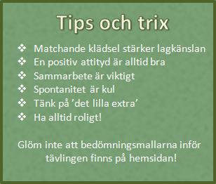 tips-och-trix-riksfinalen