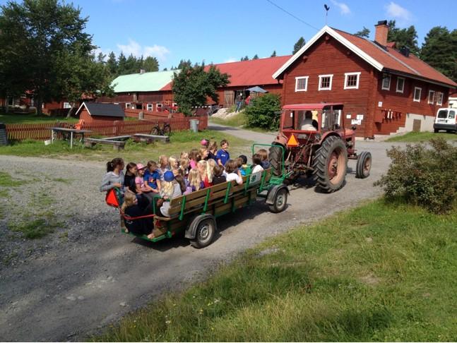 Vagnsåkning på Färsna 4H-gård.